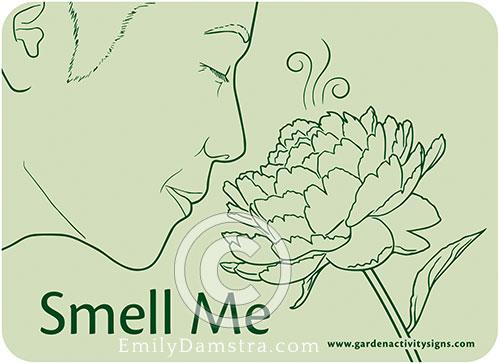 Damstra SmellMe