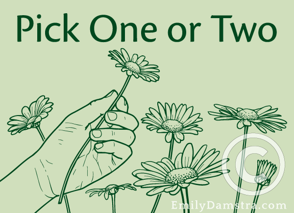 Pick One or Two illustration