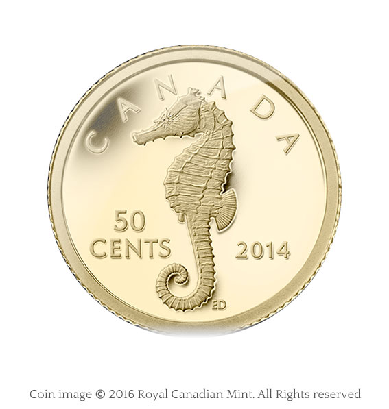 coin sea horse